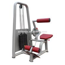 Equipo de gimnasio comercial Extensión de la espalda