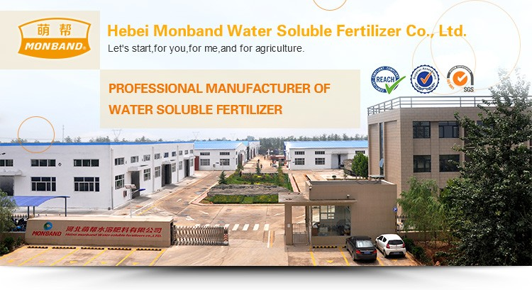 100% water soluble agro fertilizer CMN granular
