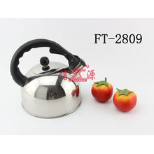 Stainless Steel Antique Water Kettle (FT-2809-XY)