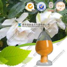 Pigment soluble dans l'eau comestible Gardenia Yellow Noodle