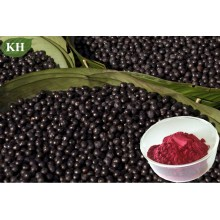 Polyphenols 10%, 40%; Proanthocyanidins 40%, 60%; Flavones 10% Acai Extract