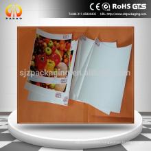 China Eco-solvent &solvent 220mic matte Front Print Backlit PET Film