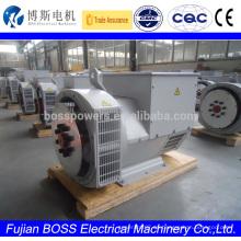 BCI184G Brushless Einphasige 34Kva 220v Lichtmaschine
