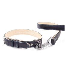 Hundehalsband und Leine