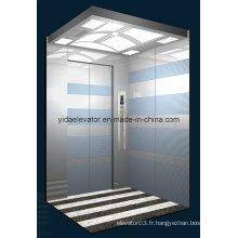 Ascenseur de passagers avec grand espace (JQ-N011)
