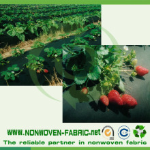 Tissu non-tissé à faible coût pour tissus non-tissés pour l'agriculture