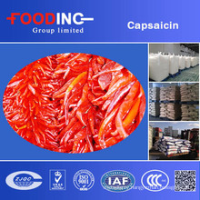 Best Quality and Factory Price Pepper Extract Capsaicin