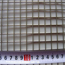 Bird Cage Stainless Steel Welded Mesh