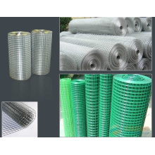 Welded Mesh PVC and Galvanized