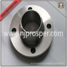 Stainless Steel Welding Neck (WN) Flange (YZF-F20)