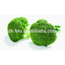 Organic Dehydrated Broccoli Powder