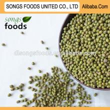 Зеленые бобы мунг импортера