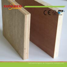 BB / CC Grade Okoume Sperrholz zum Verpacken und Verpacken
