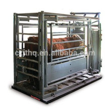 Kingtype Livestock Scale/Cattle Weighing Scale/Animal Scale