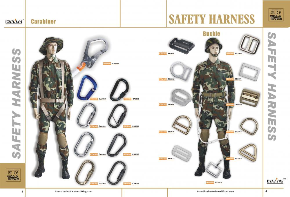 Carabiners and Buckles