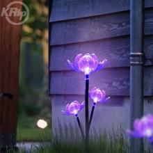 Открытый Сад Цветочные Огни