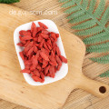 Non GMO Superfood Bio Goji Beeren
