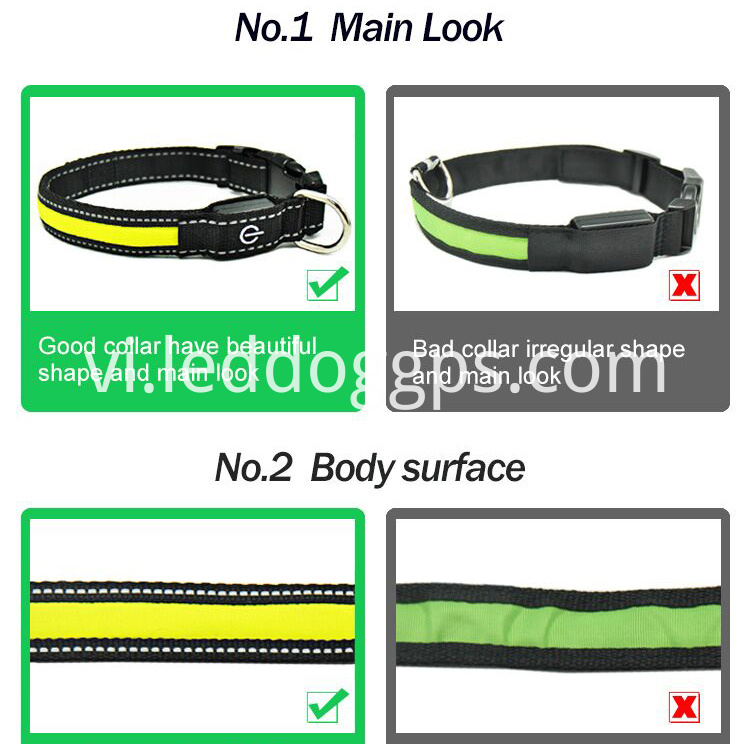 Glow Light Up Dog Collar