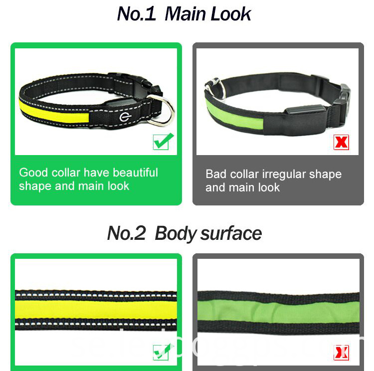 Night Safety Dog Collar