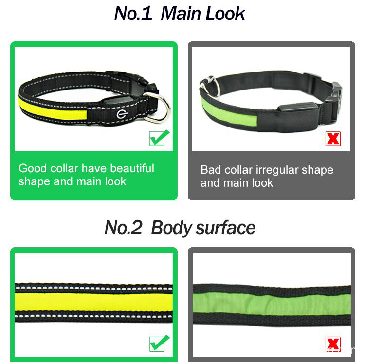 Night Security Led Dog Collar