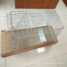 Piège à animaux en acier pliable Piège à cage en renard
