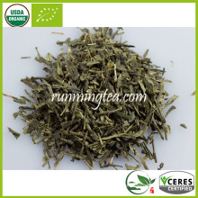 Organische Sencha Green Tea Import Export