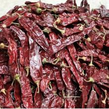 Fourniture d'usine de poivre rouge doux de paprika de haute qualité
