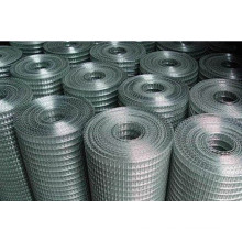 Welded Wire Mesh for Fence Panel