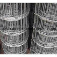 Edelstahl-geschweißter Draht-Mesh-Zaun (Herstellung)