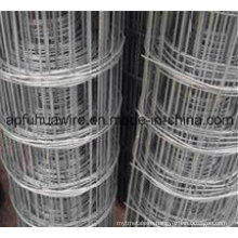 Stainless Steel Welded Wire Mesh Fence (manufacture)