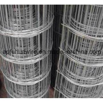Acero inoxidable de malla de alambre soldado valla (fabricación)