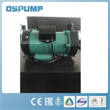Magnetic water pump