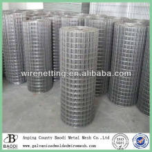 building electro galvanized welded wire mesh netting