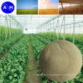 Chelation Group Amino Acid Chelate Calcium Organic Amino Acids