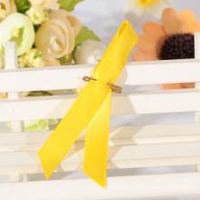 Wholesale aids ribbon,satin ribbon