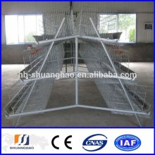Hot galanized / elctro glvanized chicken cage / chicken egg poultry farm