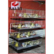 Trade Assurance Chick Rearing Cage en venta