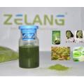 Distributeur Bulk Matcha Green Tea Powder Organic Matcha Label privé