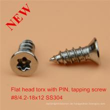 Flachkopf Torx Schraube mit Stift Sicherheitsschraube Ss Sicherheitsschraube