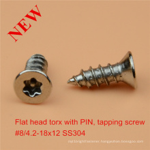 Flat Head Torx Screw with Pin Safety Screw Ss Safety Screw