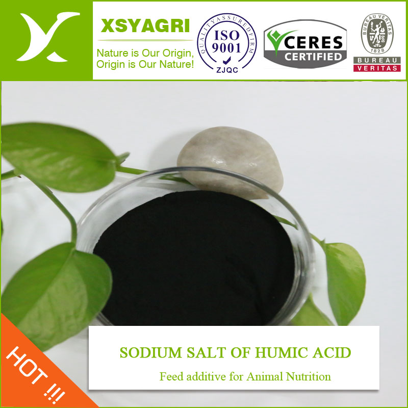 water Soluble Sodium Humate 85%