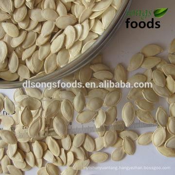 Wholesale Pumpkin Seeds Shine Skin Pumpkin Seeds Price