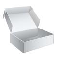 A caixa de presente requintado de tênis