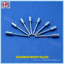 Customized Electric Round Metal Plug Pin From Dongguan (HS-BS-0039)