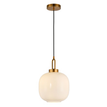 Modern Home Decor Hanging Suspended Pendant Light
