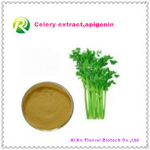 High Quality Factory Supply Directly Natural Celery Extract Powder