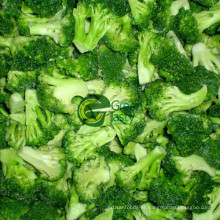 High Quality IQF Frozen Broccoli Floret of 2015
