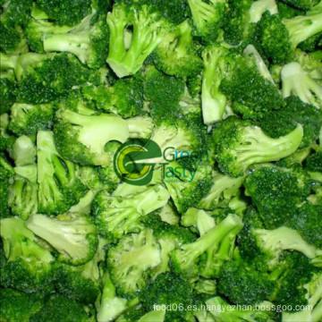 Alta calidad IQF Frozen Broccoli Floret de 2015