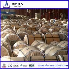 Bobine en acier galvanisé (SINO-10-1)
