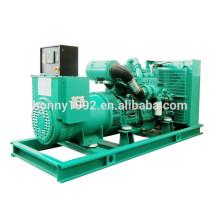 300kVA Dientes Googol 160 SAE1-14 Generador Diesel Volante